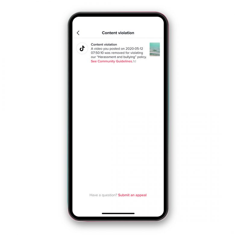 TikTok Will Provide The Video Removal Notification To The User