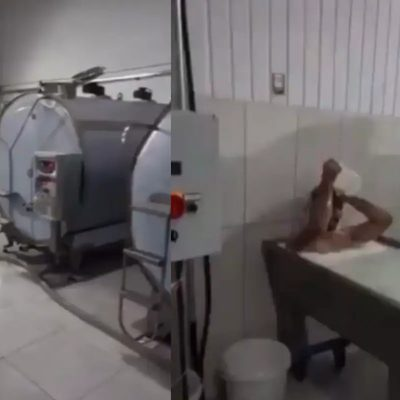 Turkish Dairy Plant Worker Arrested Following Bath in Milk Tub Trend