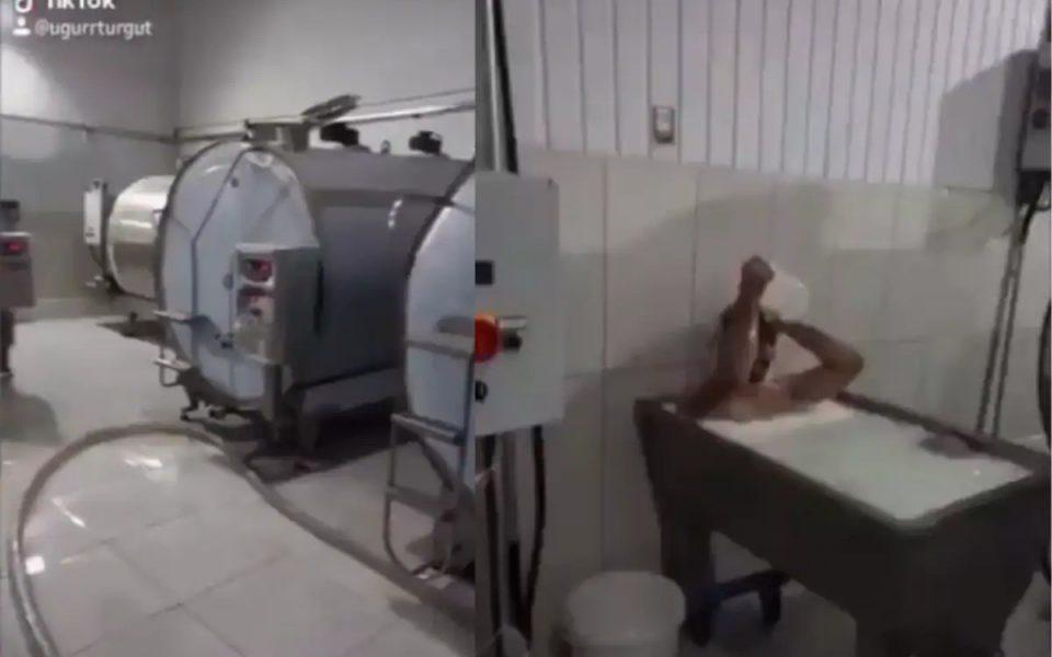 Turkish Dairy Plant Worker Arrested Following Bath in Milk Tub Trend